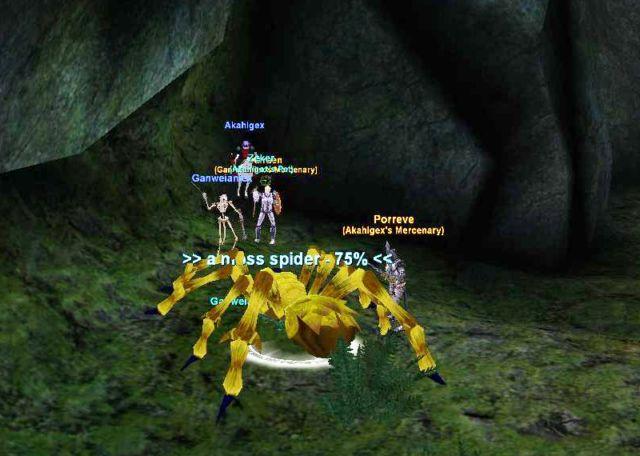蜘蛛狩りの様子