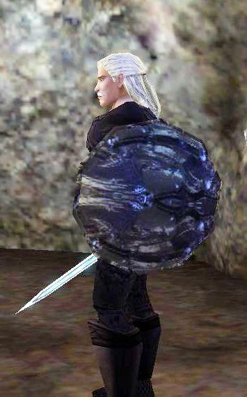 Tower Champion\'s Shieldの見た目