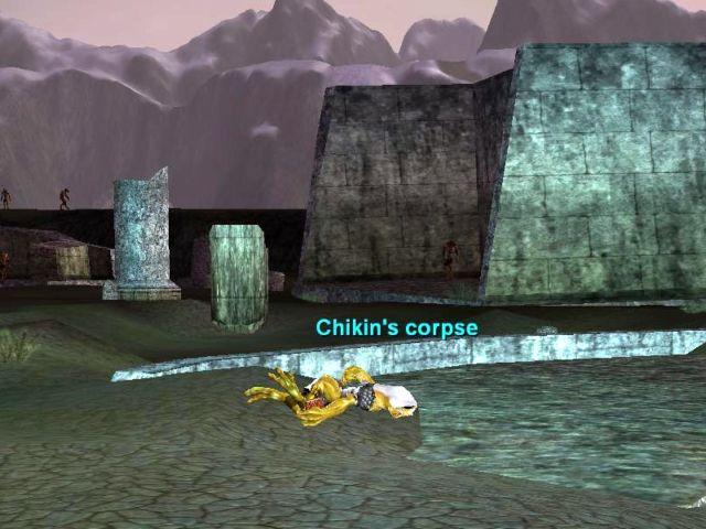 Chikinという名前の可哀想なカエル