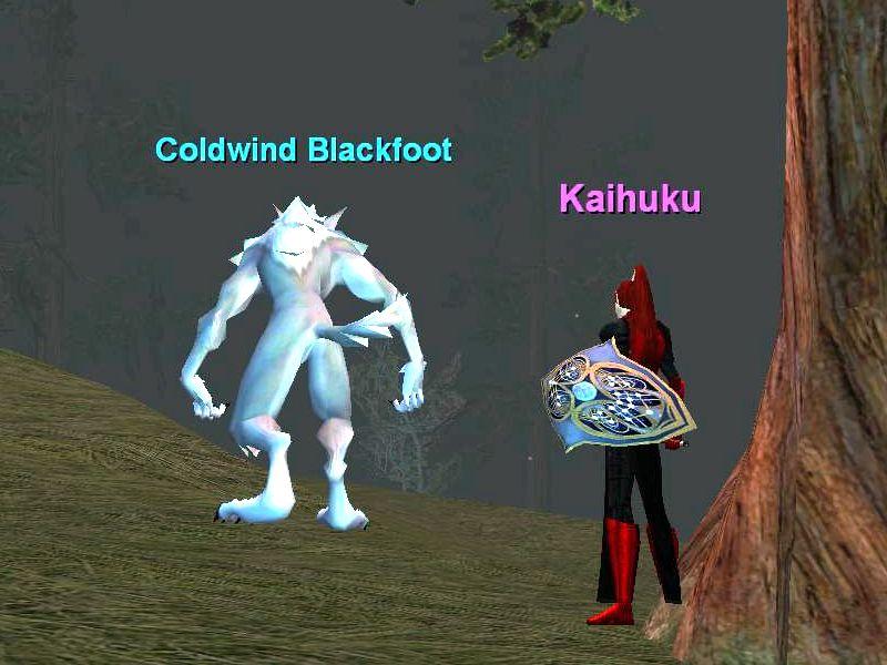 Coldwind Blackfoot