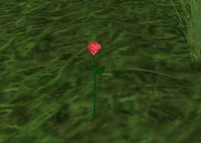 地面に一輪の花が