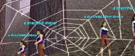 DreadlandのDrachid
