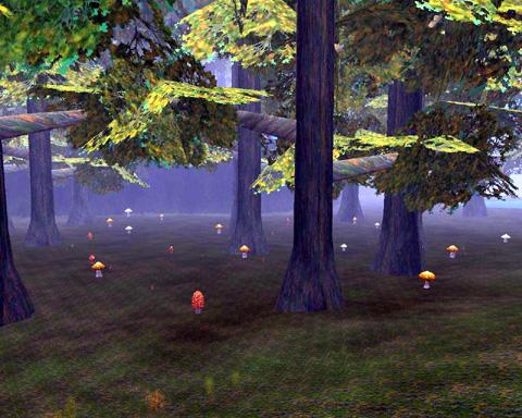 妖精さんちのキノコの森