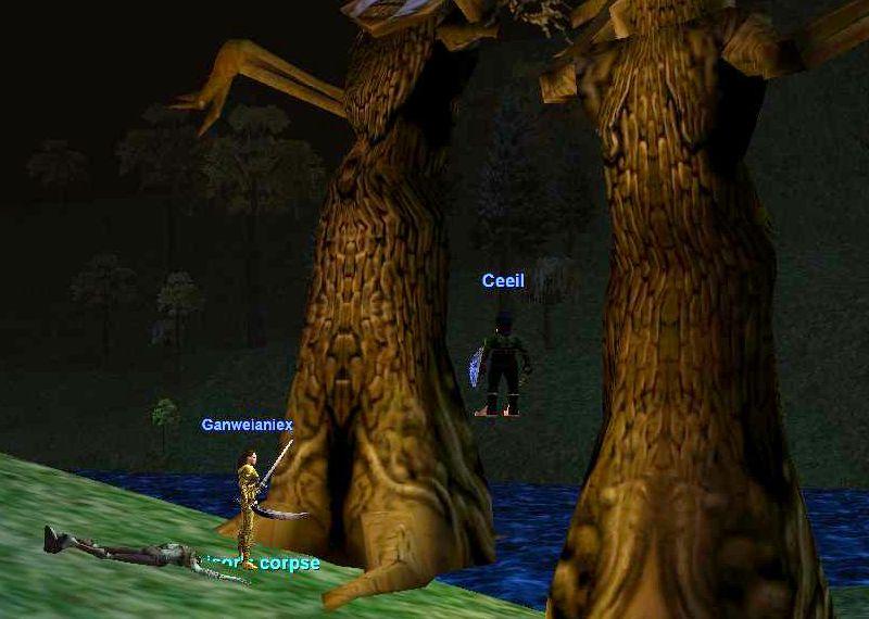 Kithcorの森で同じタスクをしている人と遭遇