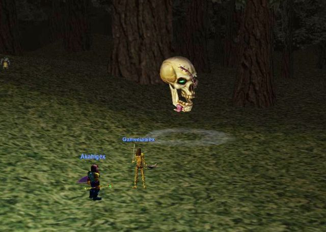 graveskull出現