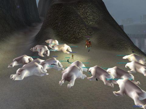 Icafallの熊狩り