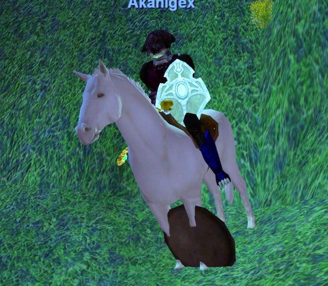 馬が楯もって出現