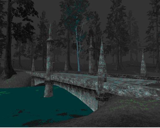 Nektulos Forestの石橋