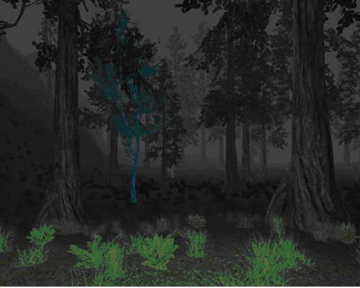 Nektulos Forestの樹木
