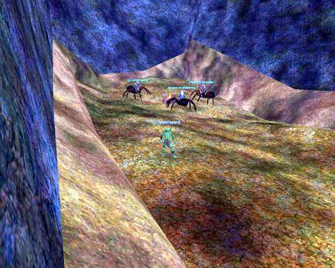 クモ人間の峡谷