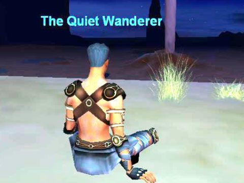 The Quiet Wanderer