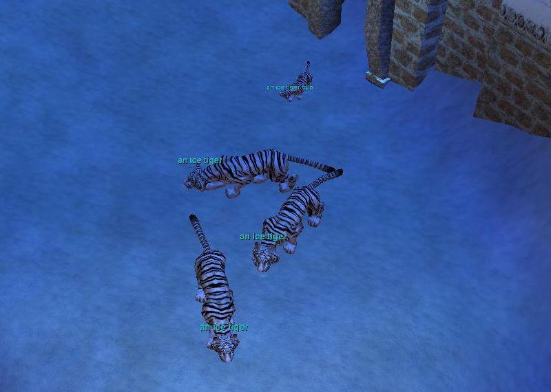 Valdeholmに居る虎発見
